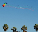 Flying Dyna Kites at Mission Bay Park.